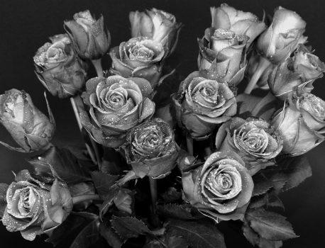Quelles fleurs pour un enterrement?